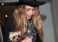 Жена Джонни Деппа с собакой